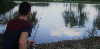 Pêcher la carpe en surface