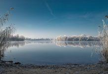 Conseils pour pêcher la carpe en hiver
