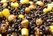 Comment bien préparer ses graines