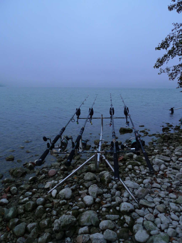 Pêche de la carpe en lac alpin